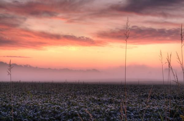 2009 Sunrises