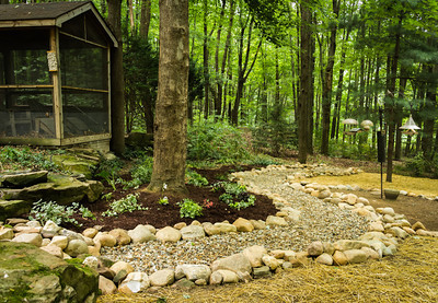 New landscaping, July 2012