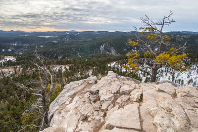 View from Buzzard's Roost