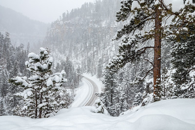 Snowy Day in Spearfish Canyon