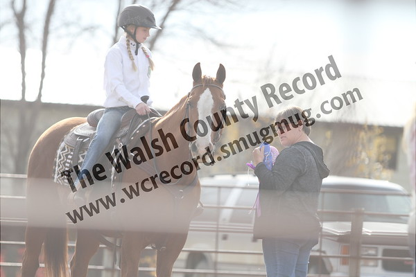 2017 Walsh County Fair