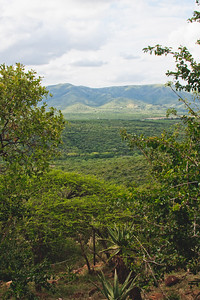 Nature from Africa Photograph 175