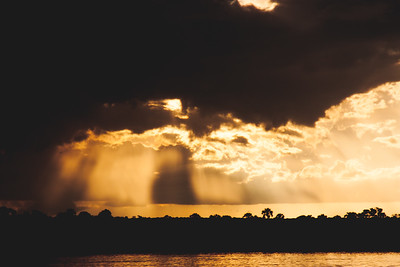 Nature from Africa Photograph 396