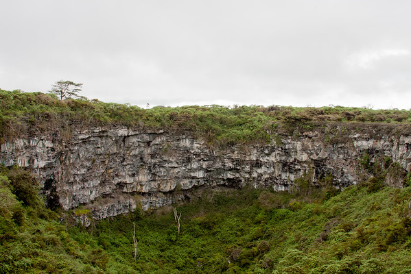 Day 7 Journey into Galapagos Photograph 26