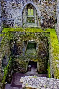 Blarney Castle Photograph 7