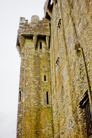 Blarney Castle Photograph 17