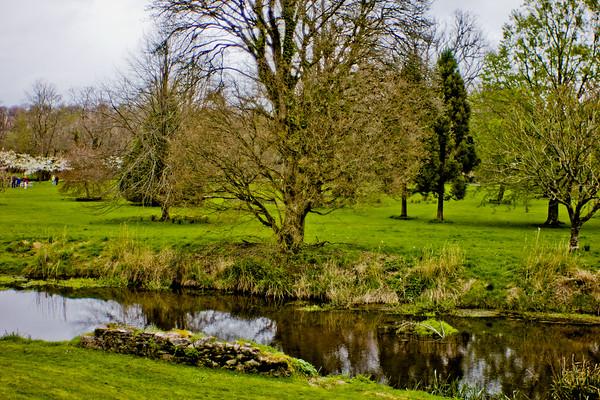 Blarney Castle Photograph 33