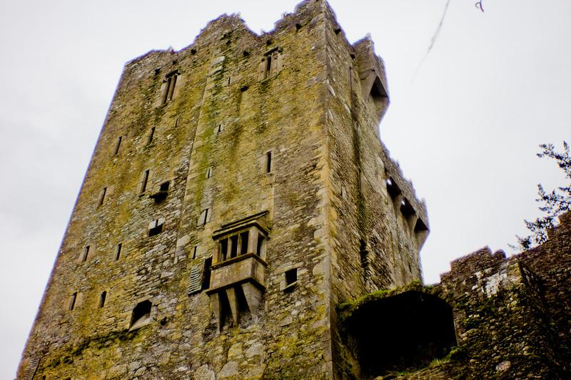 Blarney Castle Photograph 40