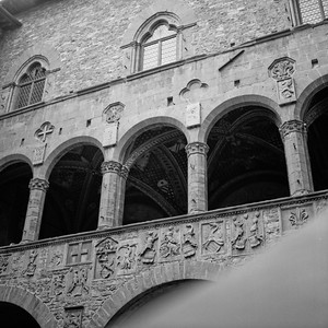 Art in Florance Photograph 8