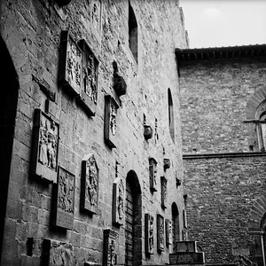 Art in Florance Photograph 13