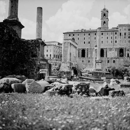 Architecture in the Roman Forum Photograph 4