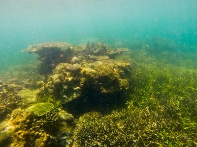 Dive in El Nido Series 4 Photograph 4