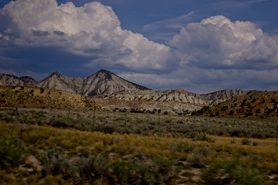 Forest Canyon Photograph 12