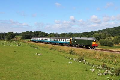 D8059+CIG on the 2T04 0945 Eridge to Tunbridge Wells at Pokehill farm on the 4th August 2017