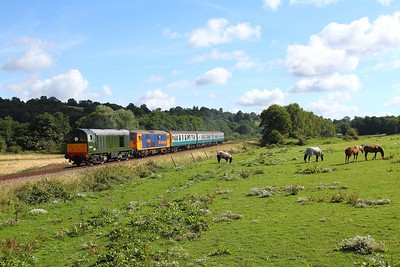 D8059+73136 on the 2J05 0945 Tunbridge Wells to Eridge at Pokehill farm on the 6th August 2017