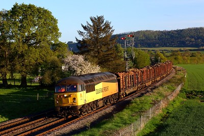 56094 working 6Z51 Baglan Bay to Chirk loaded timber at Cheney Longville, Craven Arms on 19 May 2021  Class56, ColasRail, TheMarches
