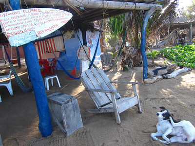 Mexico 2010 II