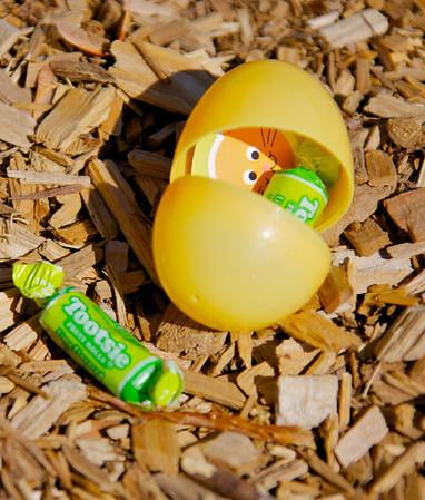 April 7 Egg Hunt 2012