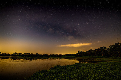 The Milky Way from Brazos Bend State Park