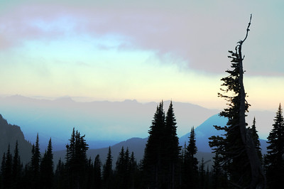 Valley View Sunset, Mt Rainier National Park