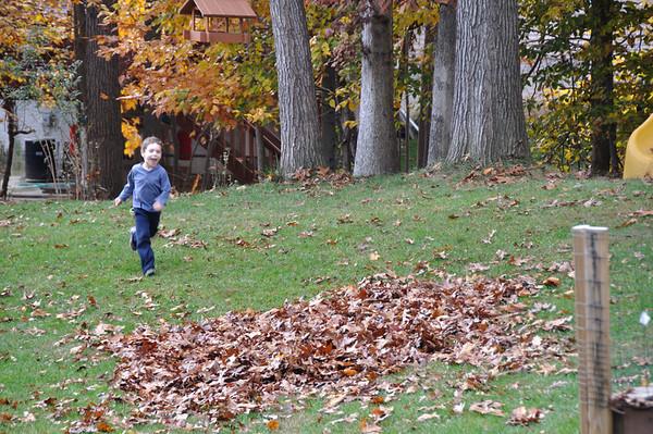 Fall - Nov. 2008
