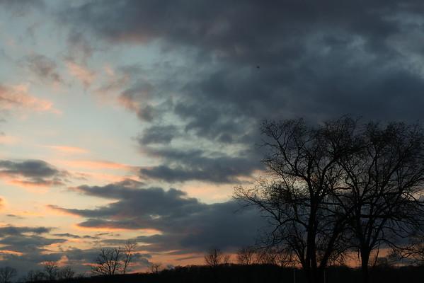 Kenilworth Park - March 2013