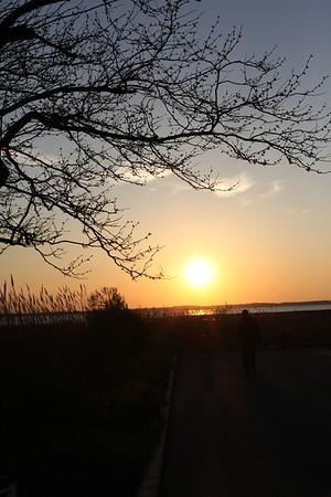 Ocean City Sunsets