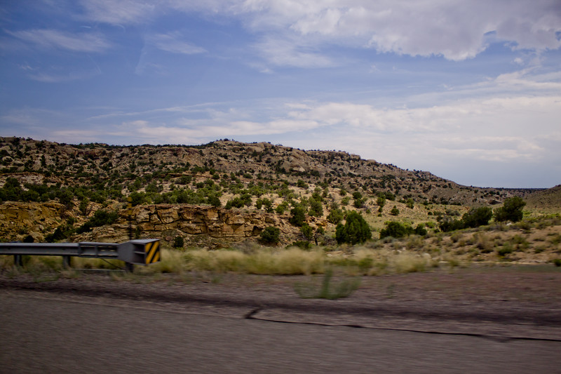 Forest Canyon Photograph 17