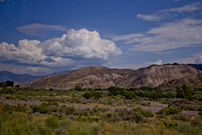 Forest Canyon Photograph 7
