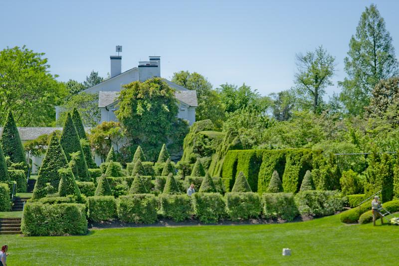 Topiary Gardens 24