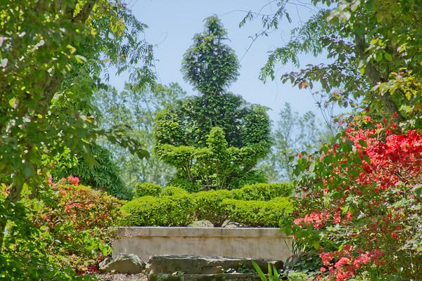 Topiary Gardens 36