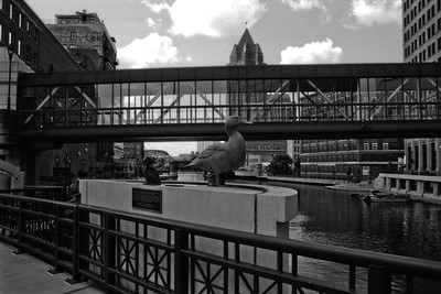 Milwaukee Cityscape on Black and White 35mm Film Photograph 64