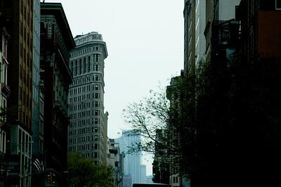 New York Project 35mm Digital Spring 29