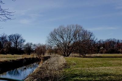 39 Sleeping Spring in Kearsley Park, Flint Michigan, USA