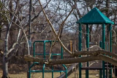 25 Sleeping Spring in Kearsley Park, Flint Michigan, USA