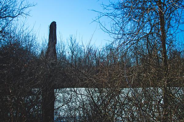 Genesee Recreational Area Sleeping Spring Photograph 35