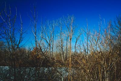 Genesee Recreational Area Sleeping Spring Photograph 37