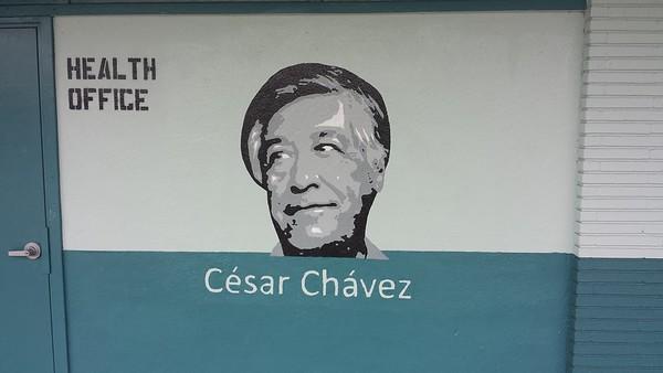 (C20) Cesar Chavez Grayscale - Actual