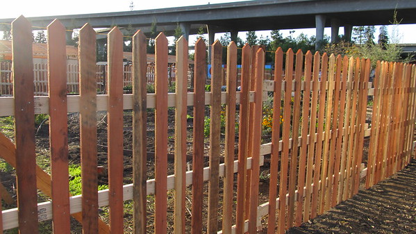 Fence Example