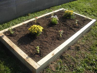 Garden Bed (4' x 8')