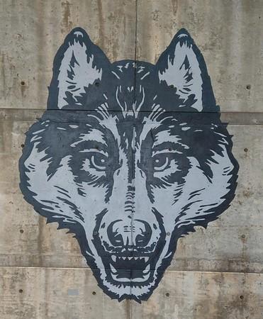 (D23) Wolves