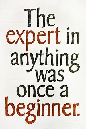 (E17) Expert Beginner