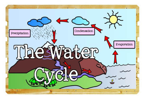 (I6) Water Cycle