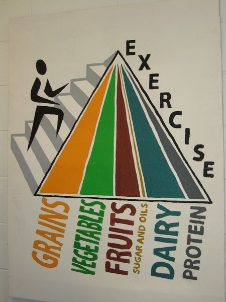 (L46) Exercise Food Pyramid - Actual