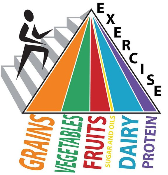 (L46) Exercise Food Pyramid