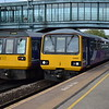 Northern Class 144 Pacer no. 144007 and Class 142 no. 142016 cross each other at Meadowhall.