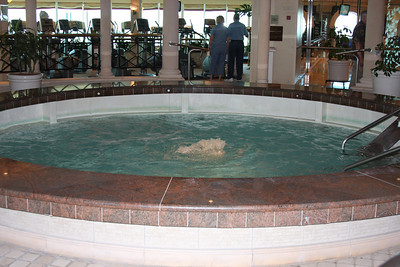 IMG_1359 INDOOR HOT TUB IN THE SPA AREA