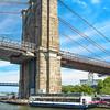 NY-Brooklyn Bridge Landscape