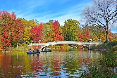 Central Park Bow Bridge Autumn Landscape