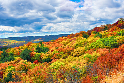 Bear Mountain Fall Foliage vista